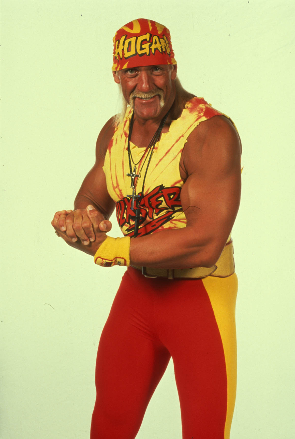 Hulk Hogan World Wrestling